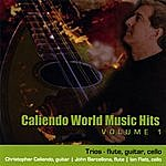 Christopher Caliendo Caliendo Hits Volume 1