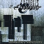 Entropia Imaginary Solutions