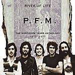 PFM River Of Life - The Manticore Years Anthology 1973 - 1977