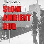 Eric Hausmann Slow Ambient Dub