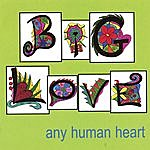 Big Love Any Human Heart