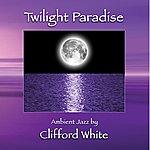 Clifford White Twilight Paradise