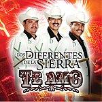 Los Diferentes De La Sierra Te Amo
