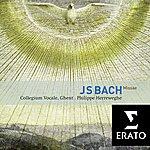 Philippe Herreweghe Bach : Masses BWV 233-235, Sanctus BWV 238