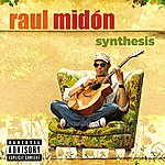 Raul Midón Synthesis (Parental Advisory)