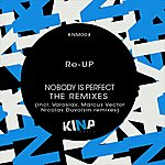 Re-up Nobody Is Perfect, The Remixes