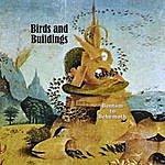 The Birds Bantam To Behemoth