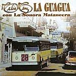 Celia Cruz La Guagua