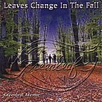 Greenleaf Avenue Leaves Change In The Fall