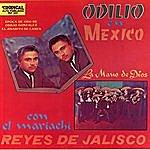 Odilio Gonzalez En Mexico
