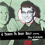 The Crickets A Tribute To Buddy Holly