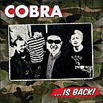 Cobra ...is Back!