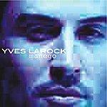 Yves Larock Manego
