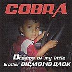 Cobra Dreams Of My Little Brother Diemond Back