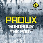 Prolix Sonorous / The Fury