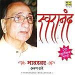 Arun Date Swaranand-Bhav Swar-Arun Date(20 Suprasidha Gaani)