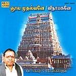 Dr. Seerkhazhi S. Govindarajan Jnaala Mudalvane / Vinayakane