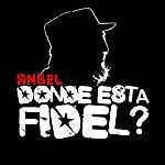 Angel Donde Esta Fidel? (2-Track Single)