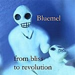 Bluemel From Bliss To Revolution