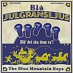 The Blue Mountain Boys Blå Julgransljus