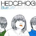 Hedgehog Blue Daydreaming