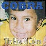 Cobra The Rise Of Cobra