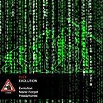 Flex Evolution (3-Track Maxi-Single)