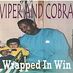Viper Wrapped In Win