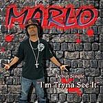 Marlo Marlo's World