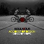 Soul Nidus Accident Or Design - Single