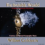 William Goldstein The Invisible World