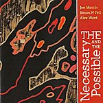 Joe Morris The Necessary and the Possible