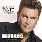 Mijares Me Cuesta Tanto Olvidarte (Single)