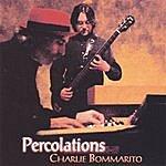 Charlie Bommarito Percolations