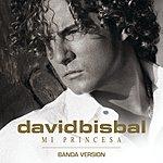 David Bisbal Mi Princesa (Banda Version)