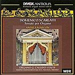 Andrea Marcon Scarlatti, D.: Organ Music (Historic Organ Music Series, Vol. 2)