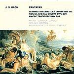 Peter Schreier Bach, J.s.: Cantatas - Bwv 36c, 203, 209