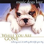 Bradley Joseph Music Dogs Love: While You Are Gone