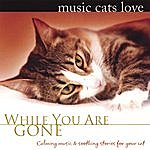 Bradley Joseph Music Cats Love: While You Are Gone