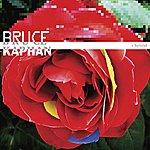Bruce Kaphan Hybrid
