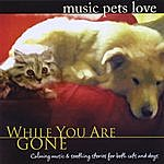 Bradley Joseph Music Pets Love: While You Are Gone