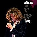 Alice Lungo La Strada (Live)