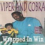 Viper Wrapped In Win (Futuristic Space Age Version)