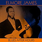 Elmore James Blues After Hours