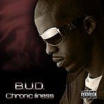 Bud Chronic Illness