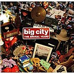 Big City Orchestra The Brugal Years