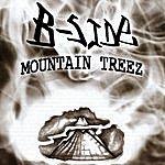 The B Side Mountain Treez