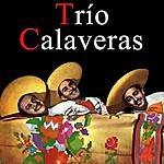 Trio Calaveras Vintage Music No. 62 - Lp: Trío Calaveras