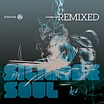 Silicone Soul Silicone Soul Remixed