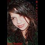 The Ravens Raven's Dreamland (Single)
